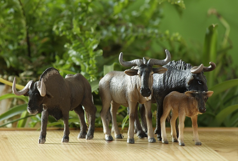 ...and me the black wildebeest from Joan! Gnus10
