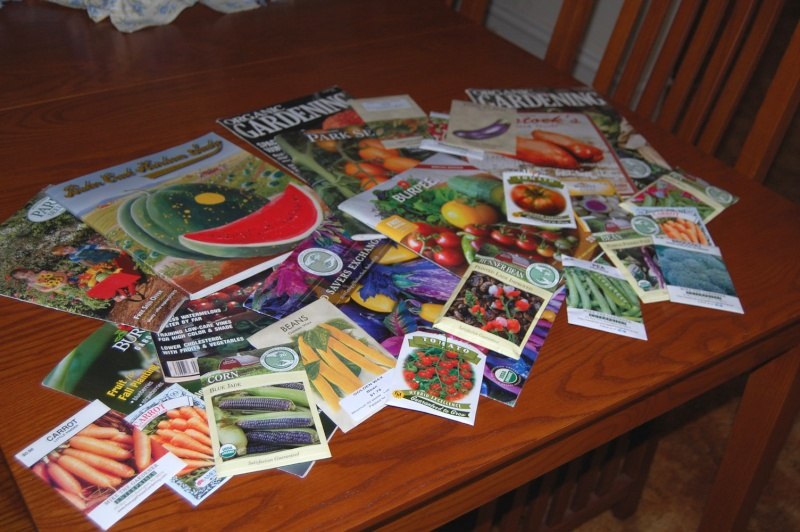 Photo of Seed Catalogs? Dsc_7511
