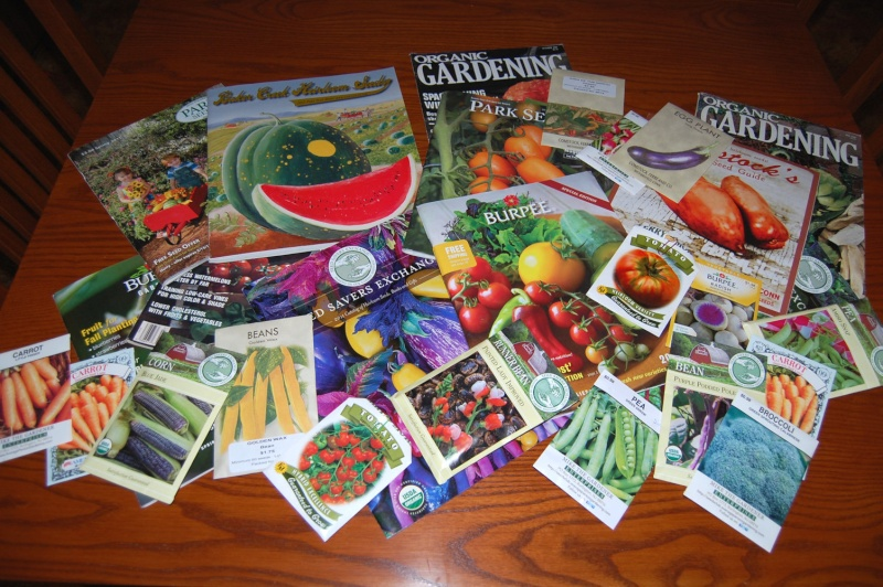 Photo of Seed Catalogs? Dsc_7512
