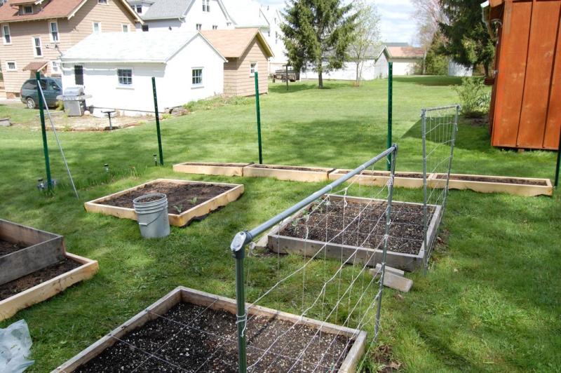 Garden progress 2012 Dsc_7815