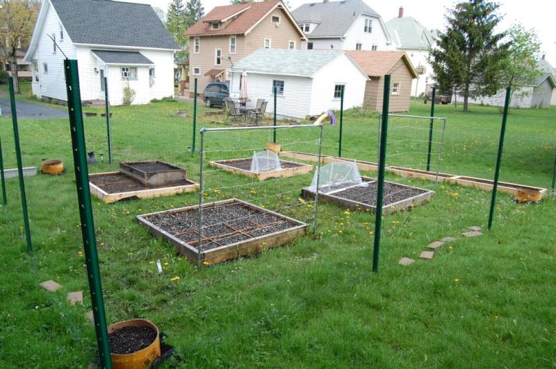 Garden progress 2012 Dsc_7819