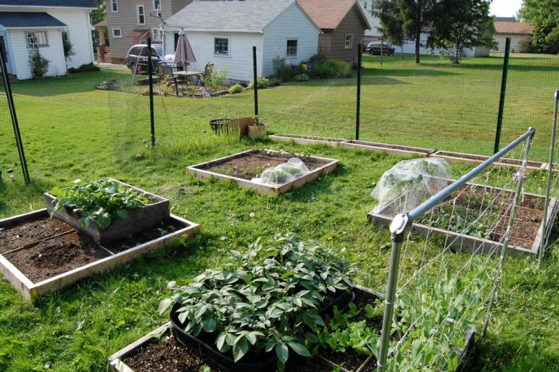 Garden progress 2012 Dsc_7853