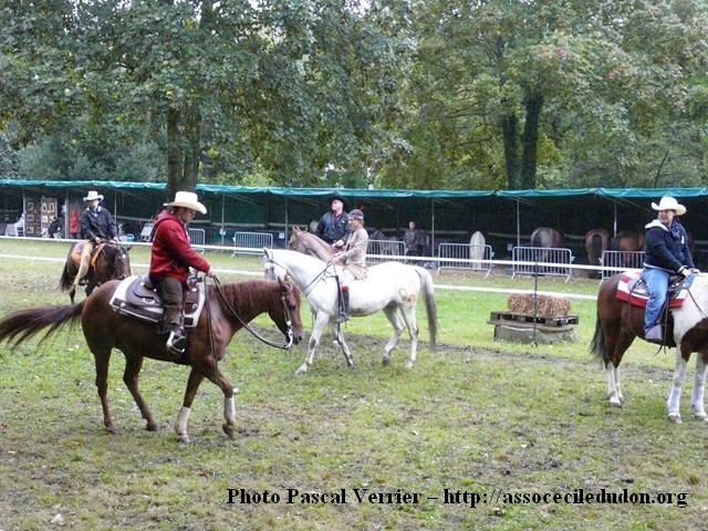 Ma démonstration au Festival du Cheval 2011 avec Texas P1060910
