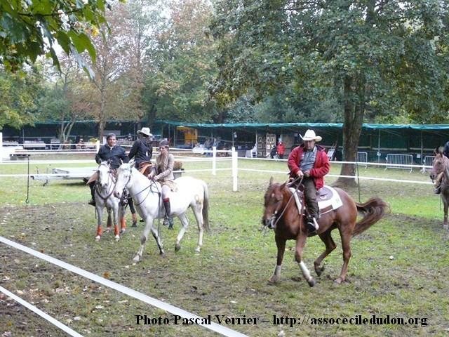 Ma démonstration au Festival du Cheval 2011 avec Texas P1060911