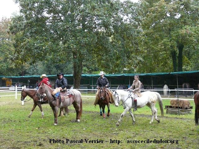 Ma démonstration au Festival du Cheval 2011 avec Texas P1060912