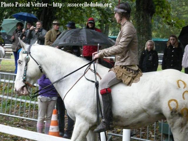 Ma démonstration au Festival du Cheval 2011 avec Texas P1060914