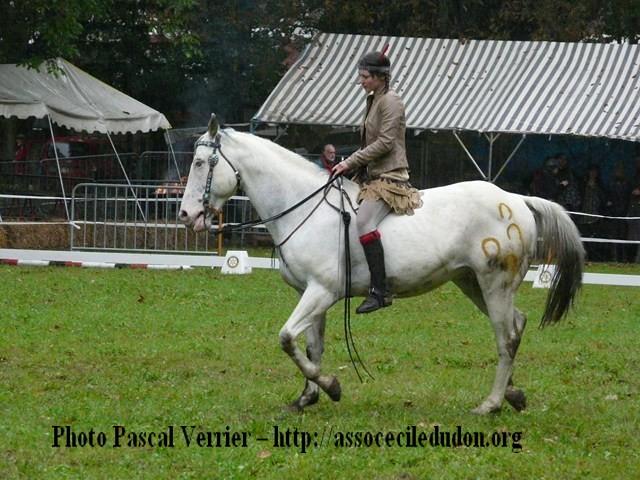 Ma démonstration au Festival du Cheval 2011 avec Texas P1060916