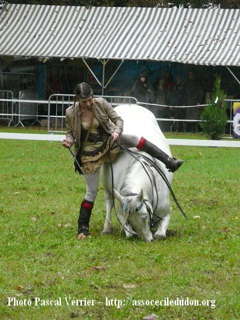 Ma démonstration au Festival du Cheval 2011 avec Texas P1060918
