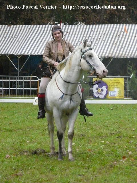Ma démonstration au Festival du Cheval 2011 avec Texas P1060920