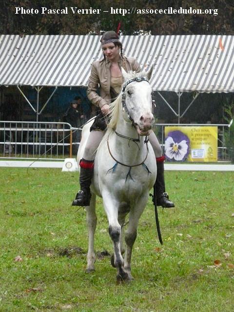 Ma démonstration au Festival du Cheval 2011 avec Texas P1060921