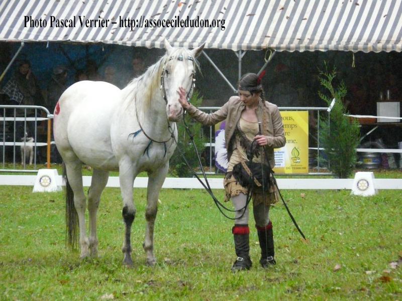 Ma démonstration au Festival du Cheval 2011 avec Texas P1060928