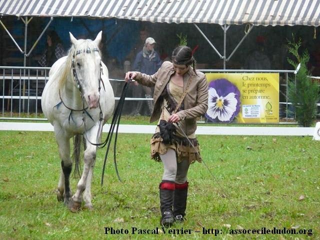 Ma démonstration au Festival du Cheval 2011 avec Texas P1060929