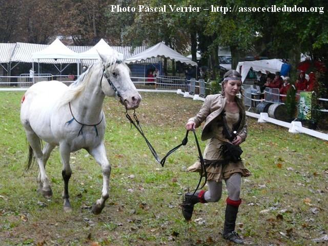 Ma démonstration au Festival du Cheval 2011 avec Texas P1060930