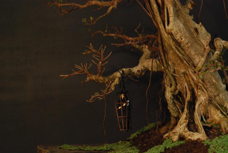 Halloween trees Dsc_1319