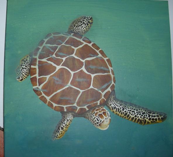 Photo peinte d'une tortue aquatique. Tortue11