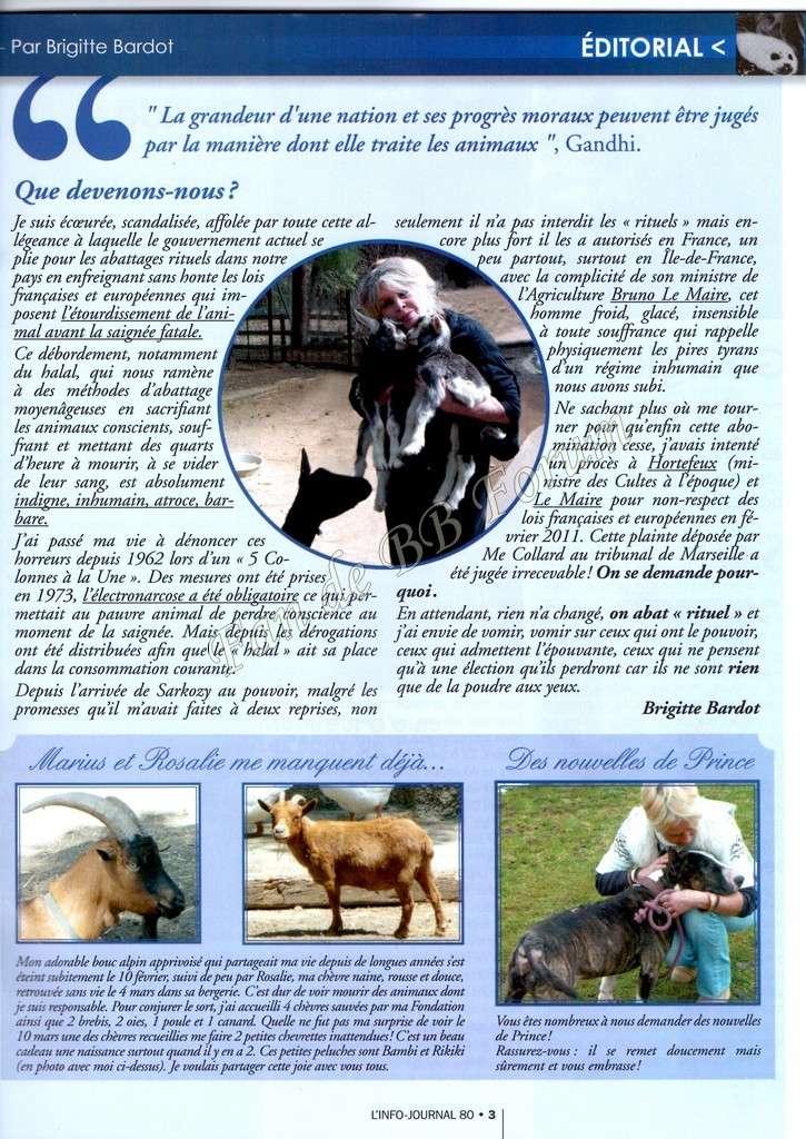 Pétition pour sauver Prince de l'euthanasie - Page 2 Img14411