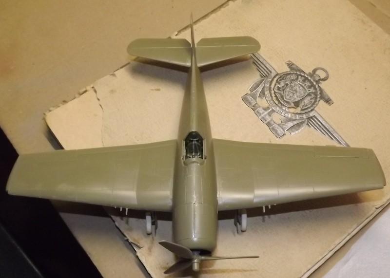 F6F-5 HELLCAT eduard 1/48 Sur_pa10