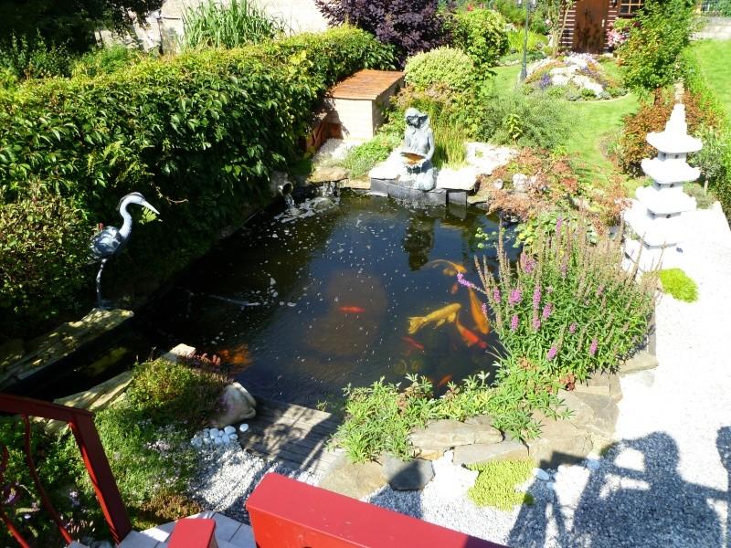 photos des bassins prises ce matin très ensoleillé ... P1010227