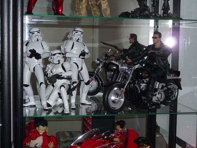 Ratatarse Collection - Hot Toys / Medicom et customs... - Page 2 P1160313