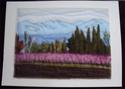 Cartes paysages Canigo11