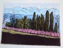 Cartes paysages Canigo12