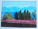 Cartes paysages Canigo13