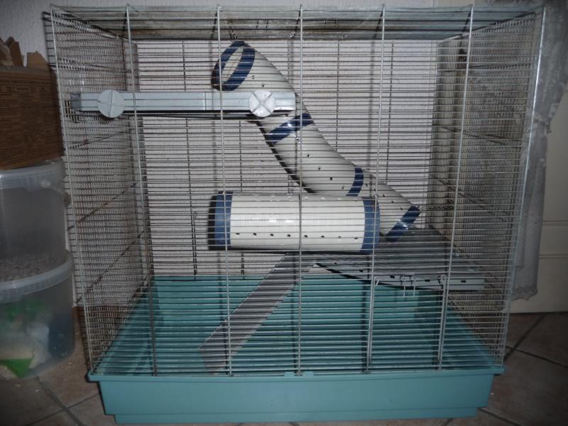 Vends cage jenny complete dans le 13 P1020816