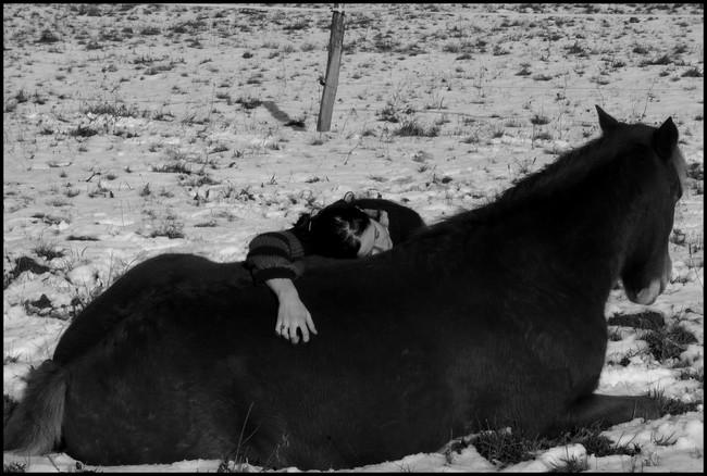 NOUVEAU CONCOURS PHOTO : la sieste à cheval ! P1030110