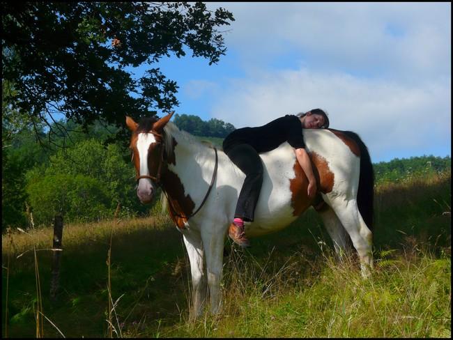 NOUVEAU CONCOURS PHOTO : la sieste à cheval ! P1170110