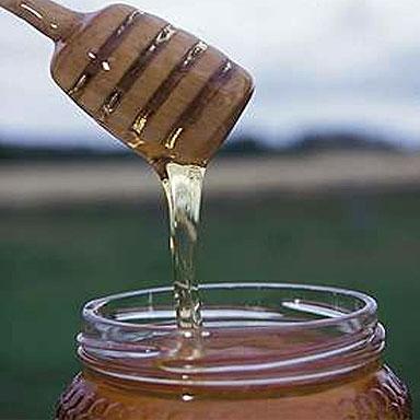 عسل النحل ومخزن العناصر الغذائية.. 37636_10