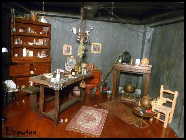 Ehowinn's bidules**Cabinet de sorcellerie** P1030120
