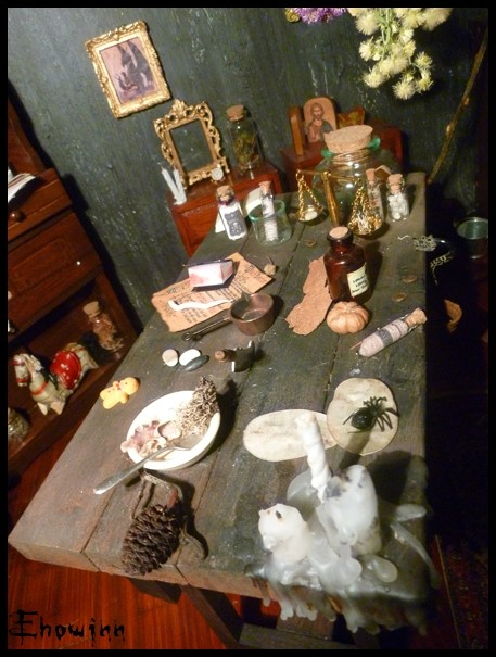 Ehowinn's bidules**Cabinet de sorcellerie** P1030124