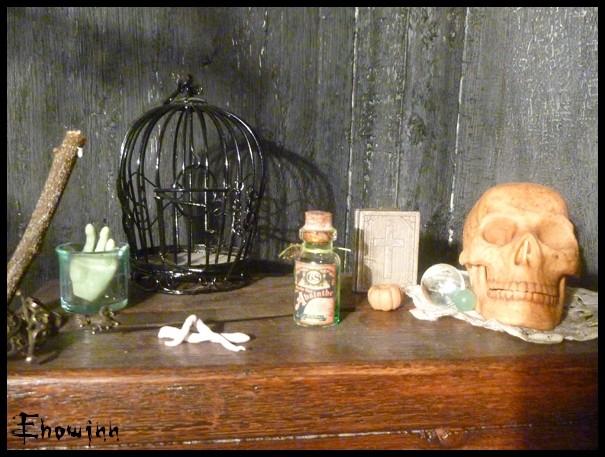 Ehowinn's bidules**Cabinet de sorcellerie** P1030125