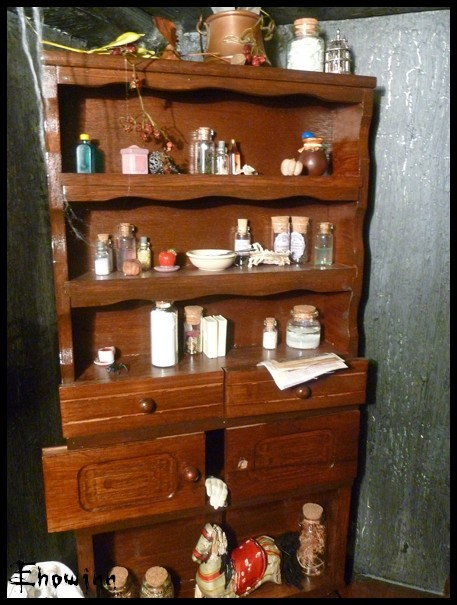 Ehowinn's bidules**Cabinet de sorcellerie** P1030126
