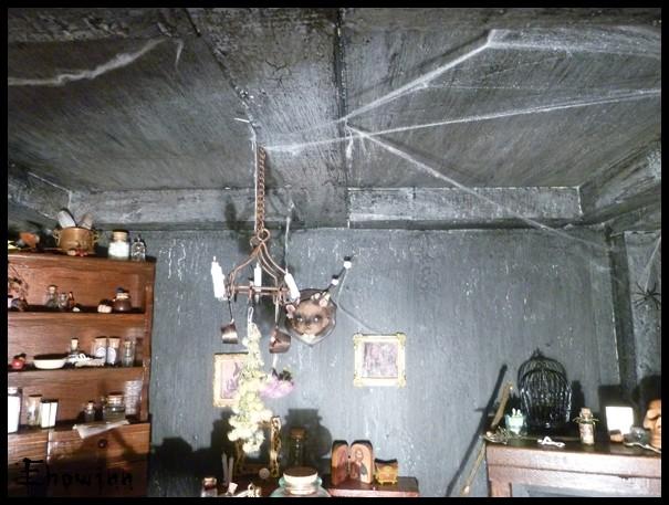 Ehowinn's bidules**Cabinet de sorcellerie** P1030129