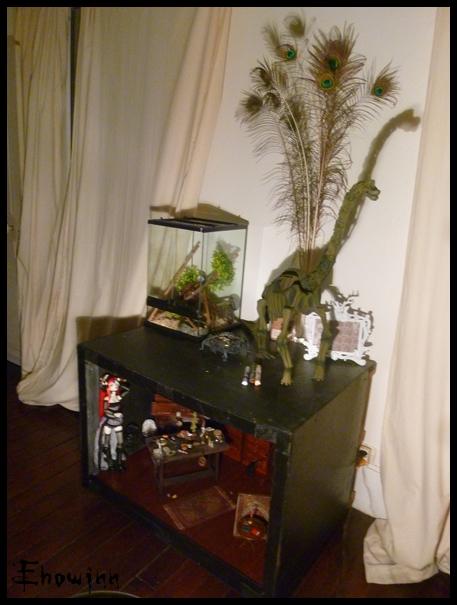 Ehowinn's bidules**Cabinet de sorcellerie** P1030130
