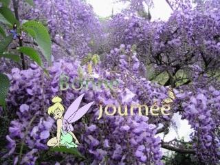forum Bjour10