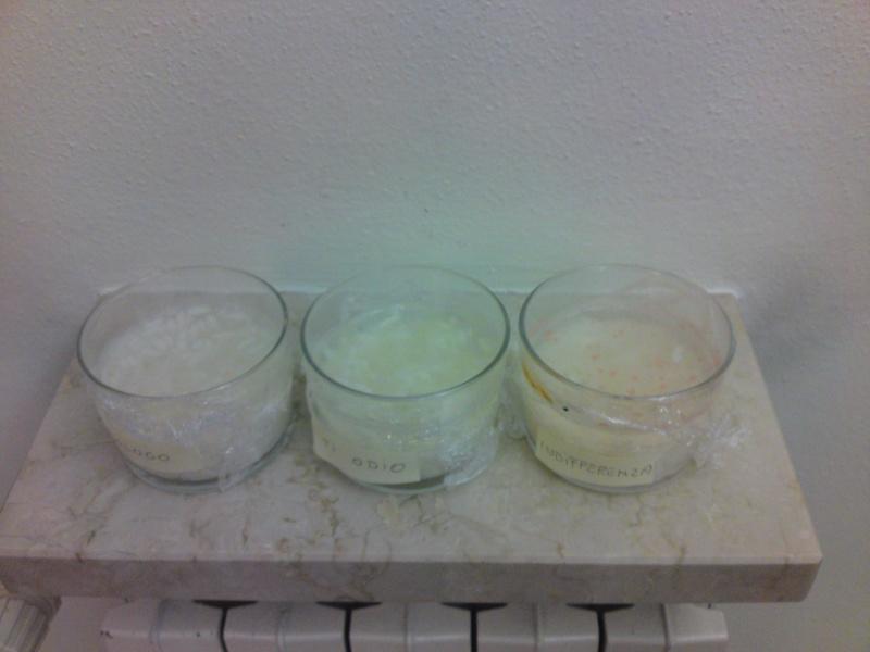 L'esperimento del riso di Masaru Emoto Creazi13