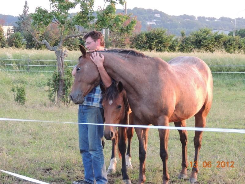 Mes chevaux, un mélange d'un peu tout le monde! 35110