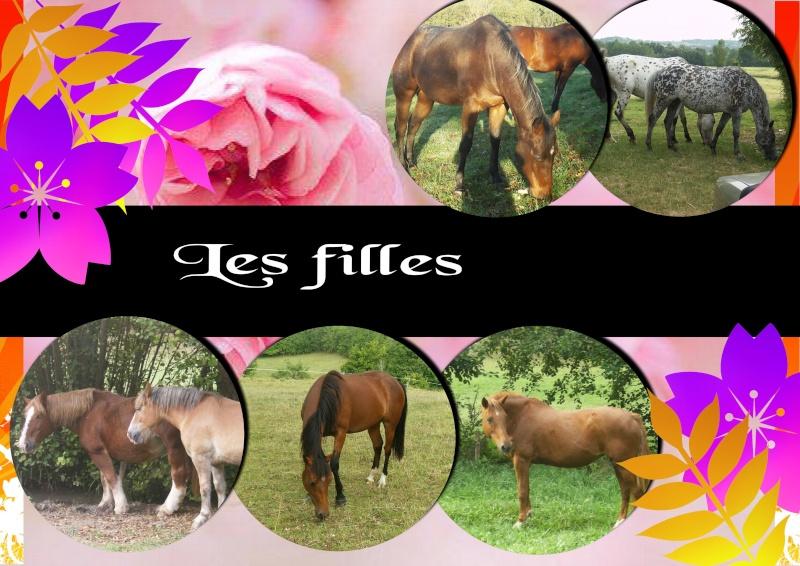 Mes petits montages photo!! Les_fi10