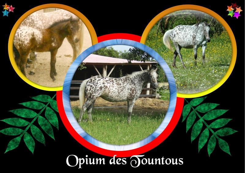 Mes petits montages photo!! Opium_54