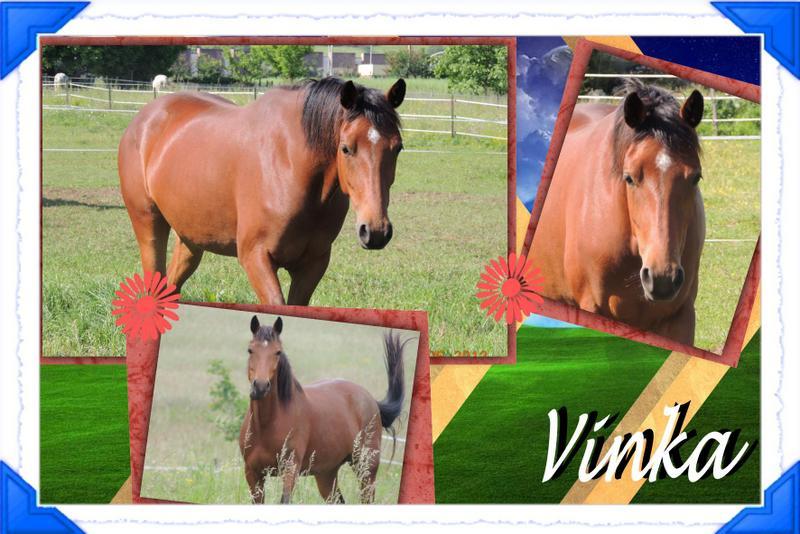 Mes petits montages photo!! Vinka_73