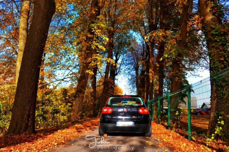 """Concours photo Decembre, thème """"la nature sous toutes ses formes'' 11710"""