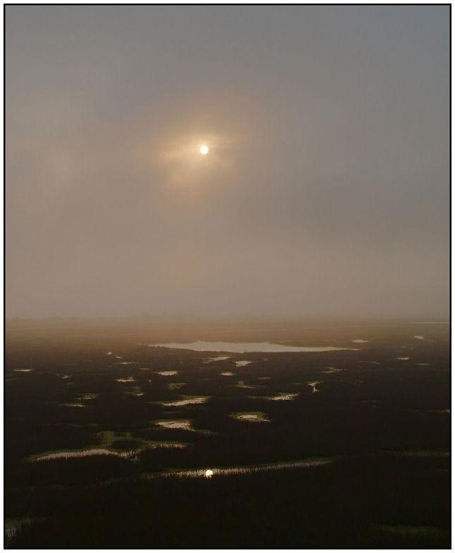 Marais dans la brume Marais10