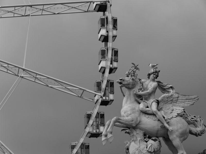 Promenage au jardin des Tuileries P2180415