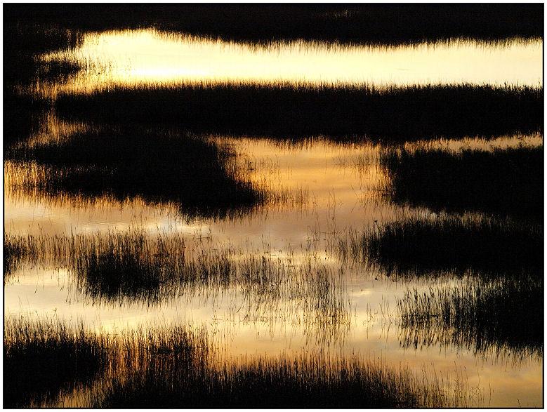 Lever sur les marais ce matin... Reflet14