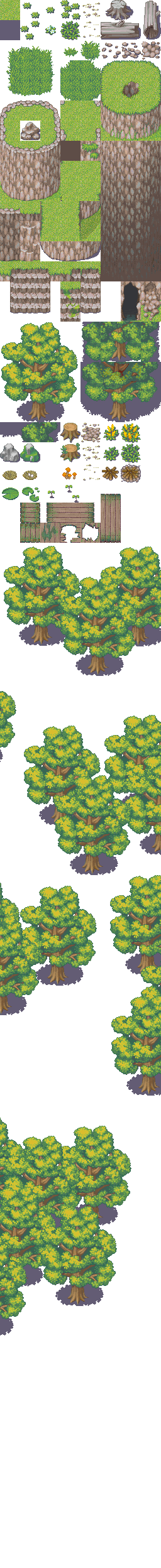 2x Forêts Forest10