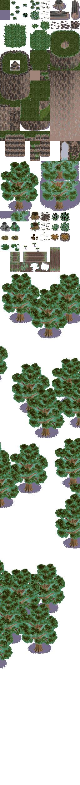 2x Forêts Strang10