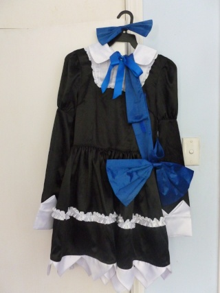 [seller] Costumes, wigs etc. Also looking for short white wig please!  P1010910