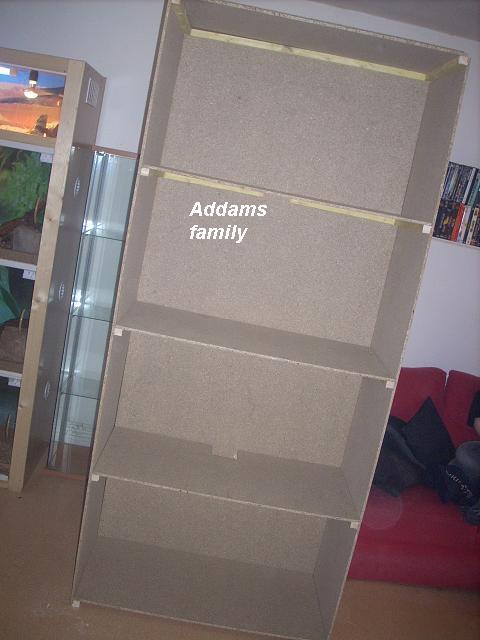 2eme batterie de terra pogona addams family Dscn3068